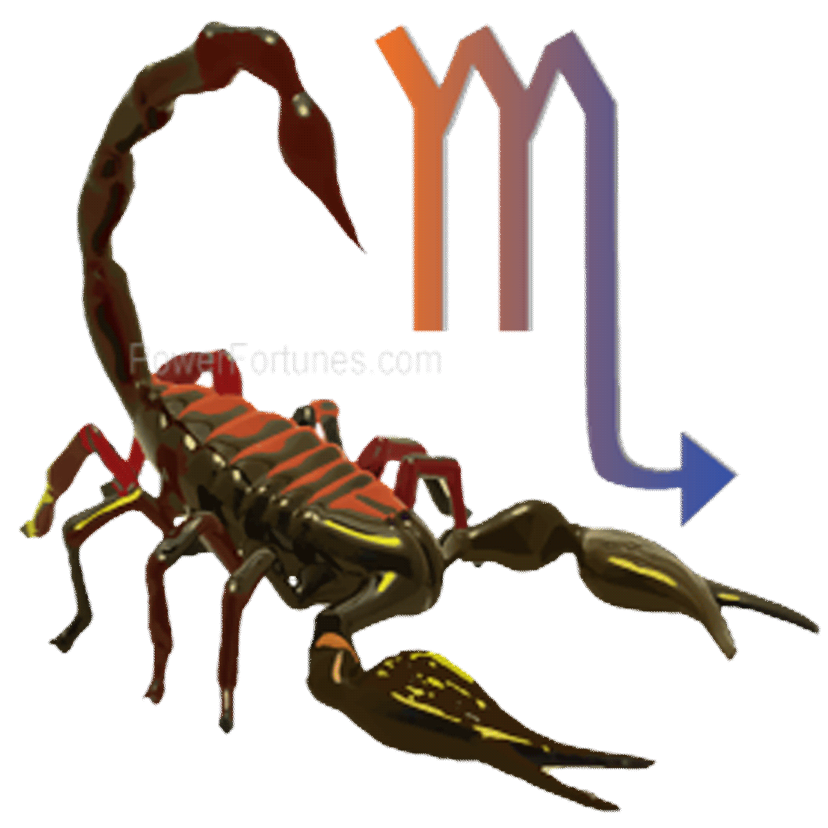 Astrology Sign - Scorpio